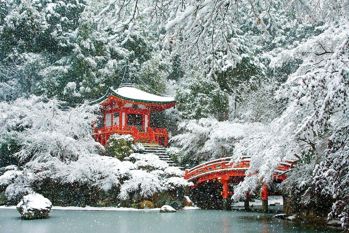 Японский зимний сад